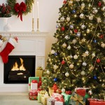 Holiday Shopping, Fraud, and Safety