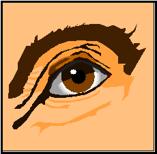 Eye Injuries – Eyes move together, so always immobilize both eyes. Seek medical attention.