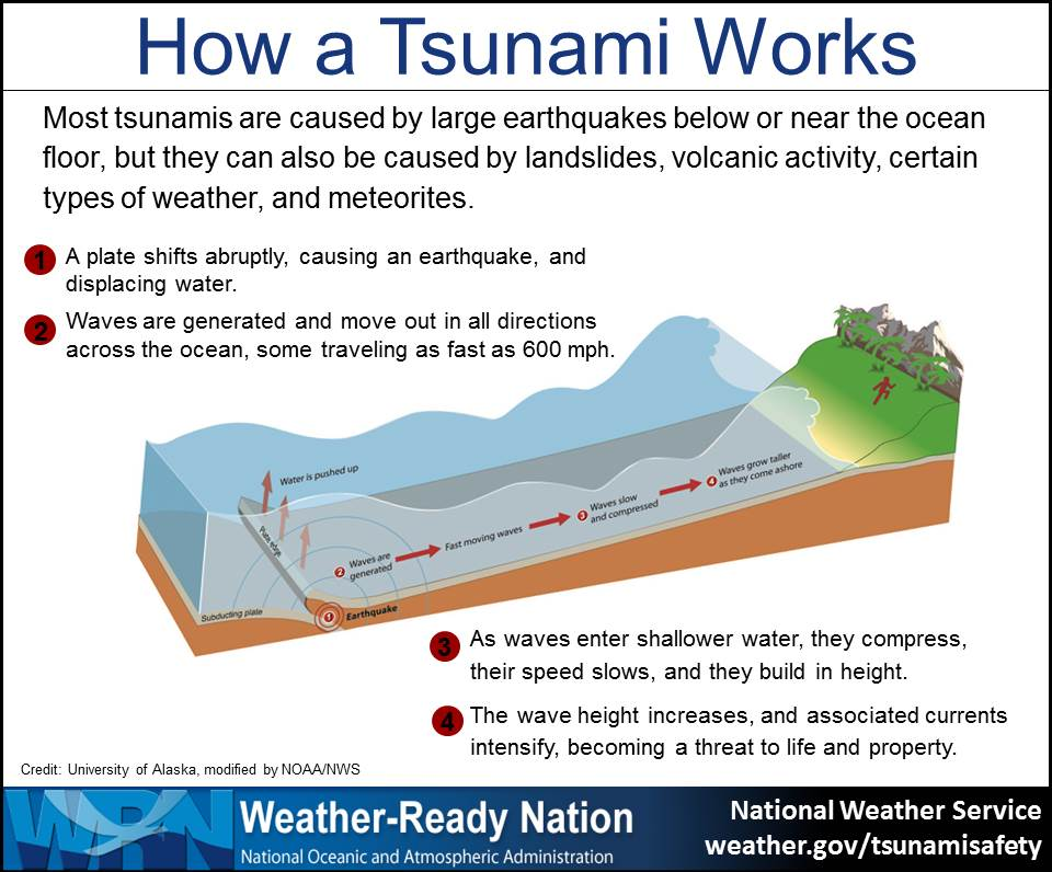 Not all tsunamis act the same. And, an individual tsunami may impact coasts differently. A small tsunami in one place may be very large a few miles away. The speed of a tsunami depends on the depth of the ocean. In the deep ocean, tsunami waves are barely noticeable but can move as fast as a jet plane, over 500 mph. As the waves enter shallow water near land, they slow to approximately 20 or 30 mph. That is still faster than a person can run. As the waves slow down, they can grow in height and currents intensify. Most tsunami waves are less than 10 feet high, but in extreme cases, can exceed 100 feet. When a tsunami comes ashore, it will not look like a normal wind wave. It may look like a fast-rising flood or a wall of water. Sometimes, before the water rushes on land, it will drain away suddenly, showing the ocean floor, reefs and fish like a very low tide. Tsunamis can travel up rivers and streams that lead to the ocean. A large tsunami can flood low-lying coastal areas more than a mile inland. The series of waves that flood, drain away and then reflood the land may last for hours. The time between waves ranges from five minutes to an hour. The first wave to reach the shore may not be the largest or the most damaging. It is not possible to predict how long a tsunami will last, how many waves there will be, or how much time there will be between waves.