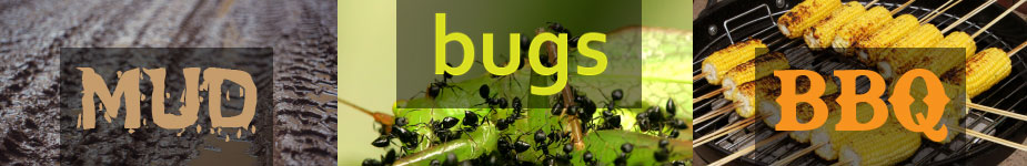 mud-bugs-bbq-banner-cms