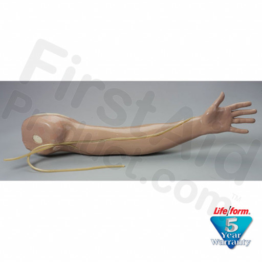 Adult Venipuncture and Injection Training Arm - White