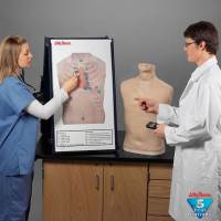 Complete Auscultation Training Station