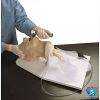 "Adult ""Airway Larry"" Management Trainer w/ Stand"