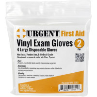 Disposable Gloves, Large, 2 Pair Per Bag