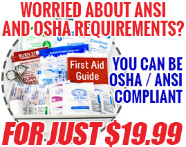 Worried about ANSI and OSHA Requirements? You can be OSHA / ANSI compliant for just $19.00