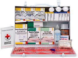 Image of 2 Shelf Industrial First Aid Station.