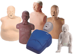 CPR Manikins in Adult, Child and Infant Packs, Plus Combo Packs. Laerdal, AMBU, Simulaids, Basic Buddy, CPARLENE, CPR Prompt & more! Introducing Prestan Manikins