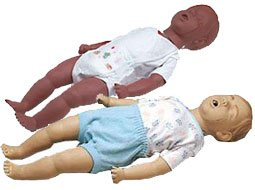 Image of two Kevin CPR Training Manikins.