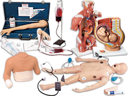 A Vast Selection of items for Medical & Nursing training and education. Our Educational Training Devices and Simulators include Anatomy, Injections, Nursing Skills & Manikins, OB/GYN, Trauma, Casualty and Moulage, Emergency Life Support, Heart and Lung Sounds, Breast Exam, Blood Pressure, Venipuncture and Testicular Self Exam. We offer Medical Dental training aids, Emergency Life Support and More