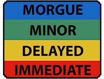 Triage image reading: Morgue, Minor, Delayed and Immediate.
